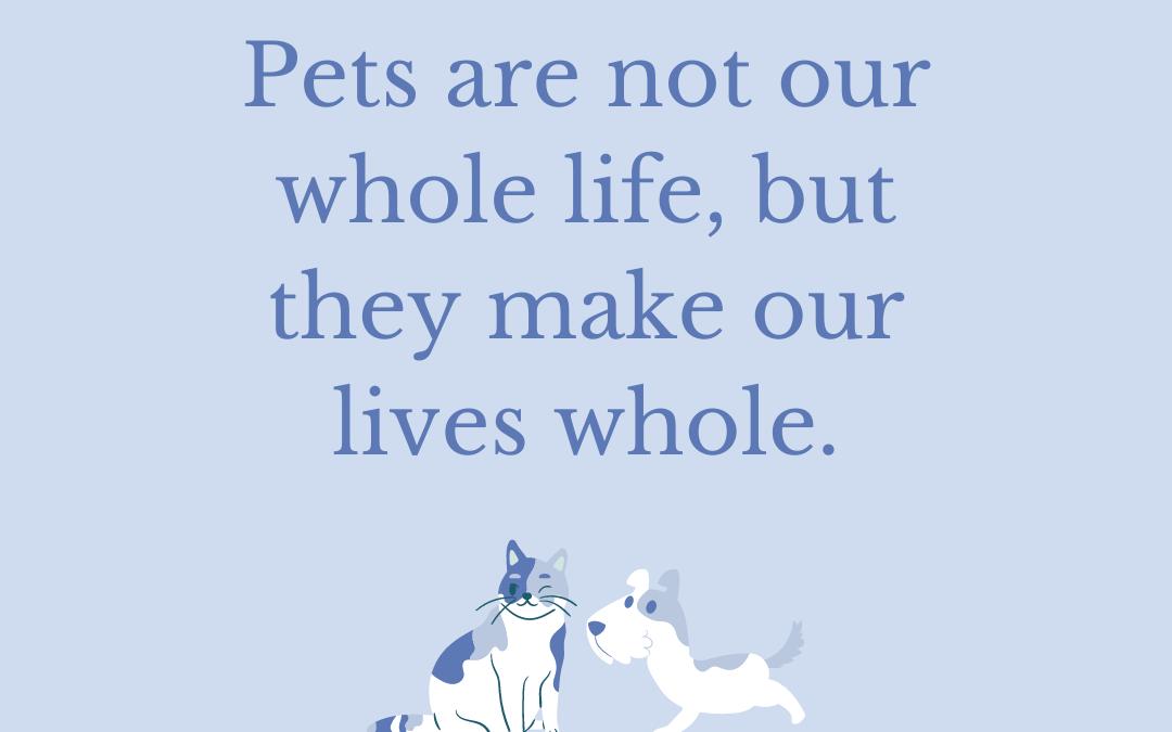 Pet Loss and Emergencies